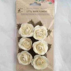 Little Birdie Sharon Celeste Cream 6pk CR63057