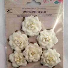 Little Birdie Carol Classic Cream 6pk CR63107