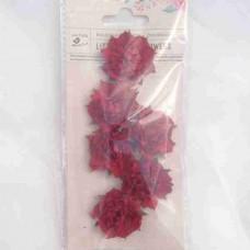 Little Birdie Camilia Cherry 6pk CR63140