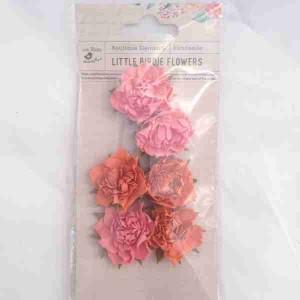 Little Birdie Camilia Coral 6pk CR63143